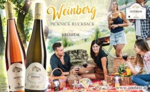 Picknick-Plakat